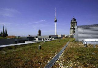 Begrüntes Dach in der Jüdenstraße