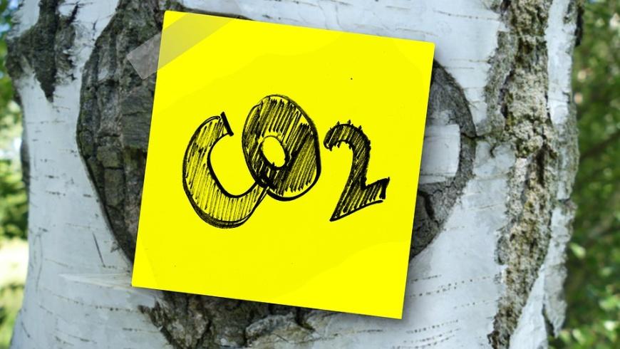Sinn & Zweck der CO2-Steuer