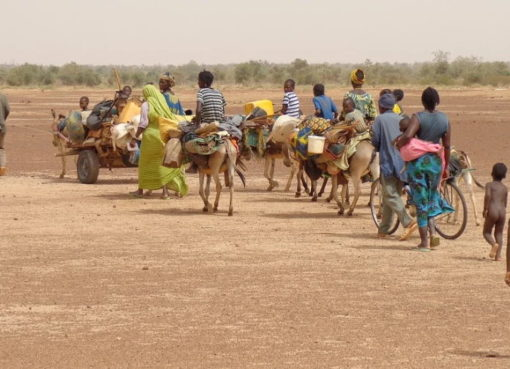 Migration in Burkina Faso bei Ouagadougou