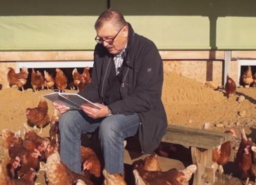 Klaus Hansen liest für Hühner