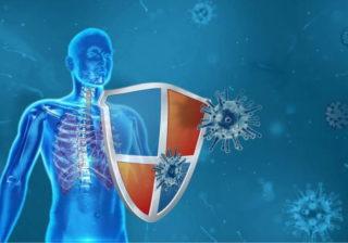 Virusabwehr