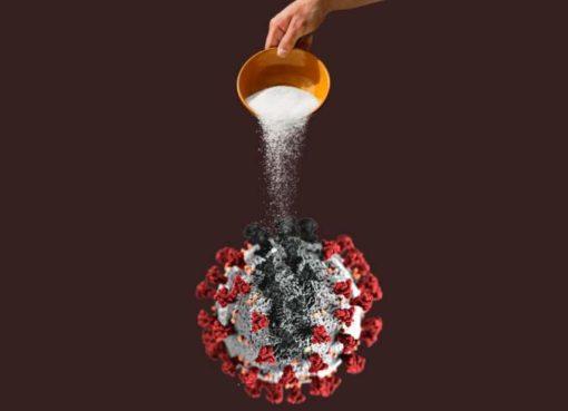 oji: Mit Salz gegen Corona